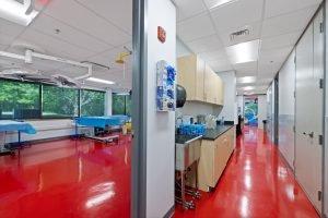 Bioskills interiors (20)