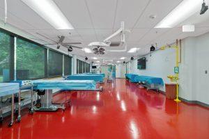 Bioskills interiors (21)